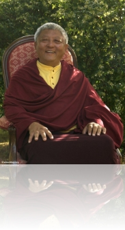 lama_jigme_rinpoche